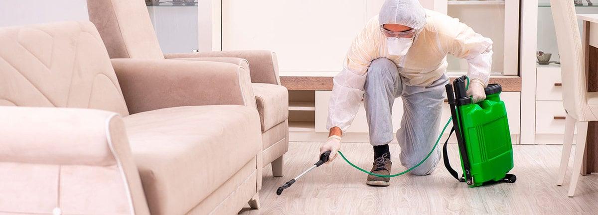 Desinfección de hogares