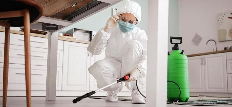 Servicio de Limpieza y desinfección de casa